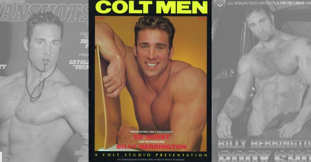 Ty Colt Gay